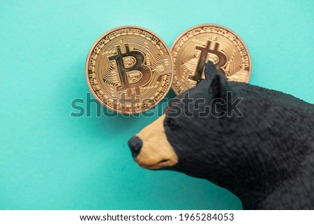 Bitcoin cryptocurrency coin with a grizzly bear. Bearish bitcoin trading Foto stock ©