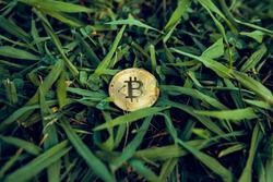 bitcoin on grass background. Business, finance, Account, Economy, trade and investment concept.
