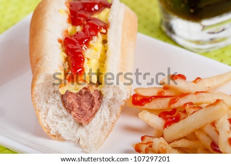 bitten hotdog sandwich with french fries but left over