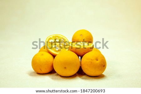 Bitter wild Fruit - Trifoliate orange (Poncirus trifoliata) Chinese bitter orange fruits. attractive plant, blooms in the early summer and decorative yellow fruits in autumn