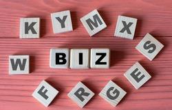 BIZ - acronym on wooden cubes on a pink wooden background.