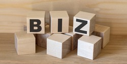 biz - isolated text in wooden building blocks