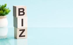 biz - text in wooden building blocks, blu backgrounds.
