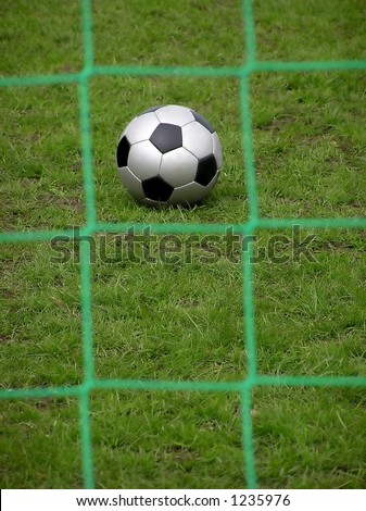 Black and gray soccer ball on green grass viewed through a green square net