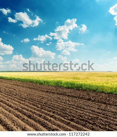 black and green fields under cloudy sky