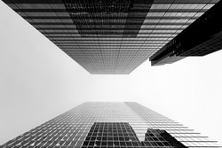 Black and white abstract low angle view of modern glass buildings with beautiful reflections in downtown financial district on clear sky background. City skyscrapers and business concept. Copy space.