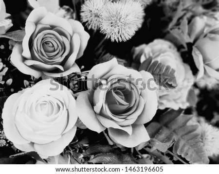 black and white,black and white flowers,dark gift #1463196605