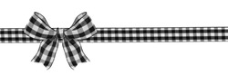 Black and white buffalo plaid Christmas gift bow and ribbon long border isolated on a white background