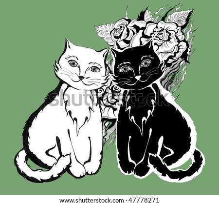 black and white cats with green eyes. Green eyes black and white cat