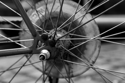 Black and white closeup of a spoke of a bicycle, bike details, cycling, leisure activity and transportation