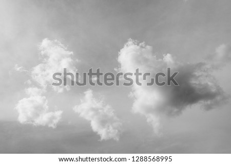 black and white clouds and sky. Dramatic sunlight of blue sky and clouds in Black and White. Black and white clouds texture on the dark sky background abstract. #1288568995