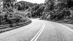 Black And White Curve In The Road In Great Smoky Mountains National Park Forest Road.