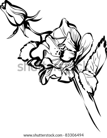 Drawings Of Flowers In Black And White Black and white drawing of a