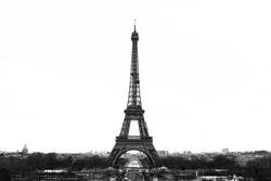 Black and White Eiffel Tower with the skyline in Paris with the city in the background.