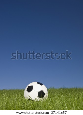Black and white football in green grass.