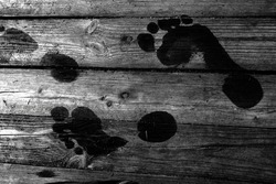 Black and white footprints on a wooden surface