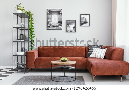 Black and white gallery of photos above brown velvet corner sofa with pillows and blanket in contemporary living room interior