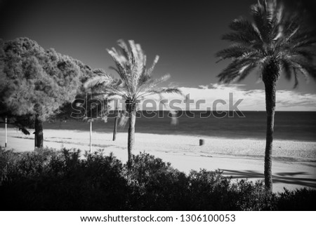 black and white infrared photography sea beach