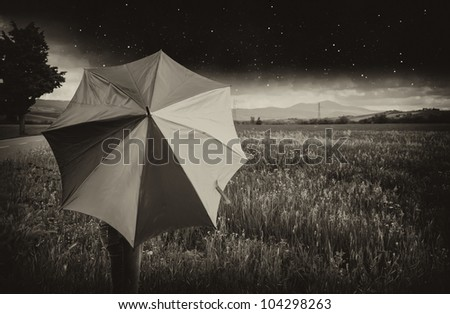 Black and White Landscape of Tuscany with Umbrella, Italy