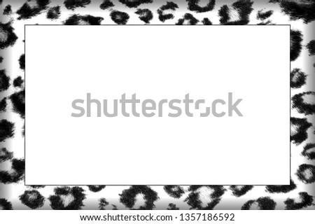 Black and White Leopard Skin Patterned Frame