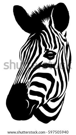 Black And White Linear Paint Draw Zebra Illustration Ez Canvas