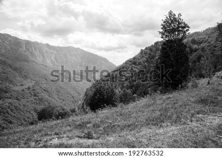 Black and white mountain landscape with trees, mountain peaks, vegetation and beautiful sky
