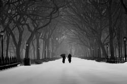 Black and white of two people hold an umbrella walking in The Mall, Central park, in a winter snowing day. Big trees, benches and lamp posts along side the snow covered walkway,New York City, USA