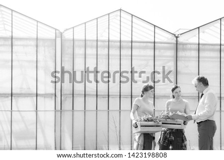 Black and White photo of Mature male biochemist discussing with female coworkers against greenhouse #1423198808