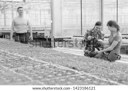 Black and White photo of Smiling male botanist looking at female coworkers enjoying coffee break in greenhouse #1423186121
