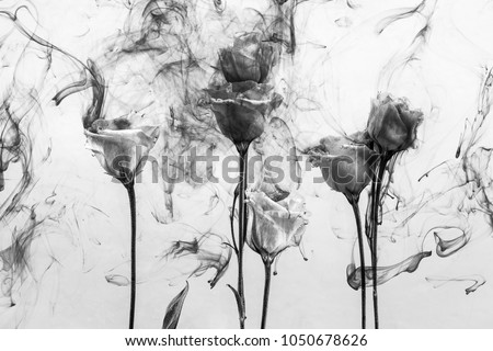 Black and white photo. White poses inside in water on a white background. Flowers is under the water with acrylic paints.
