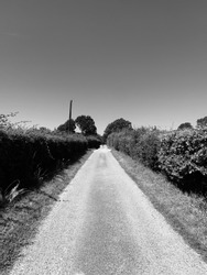 Black and White photo with a long road, hedges either side and clear sky without a cloud in sight.