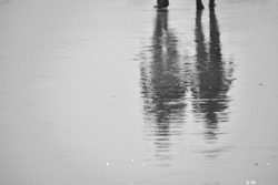 Black and white photograph. Shadows to wet roads. A reflection in a puddle. wet asphalt.