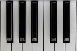Black and white piano keys octave