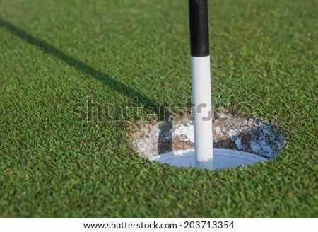 Black and White Pin in Golf Hole