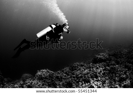 black and white portraite of a scuba diver
