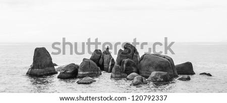 black and white seascape. sea and rock