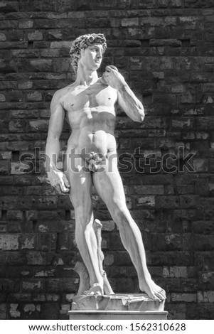 Black and white shot of the statue of David, sculpted by Michelangelo Buonarroti in around 1500, and preserved in Florence, Italy