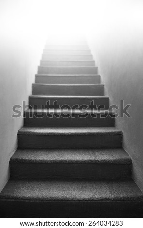 Black and white stairs - indoor step  #264034283