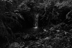 Black and White Waterfall in Brazil