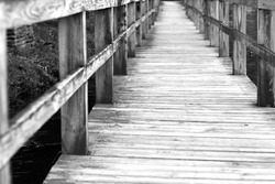 Black and White wooden walkway