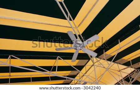 Black and Yellow Canopy