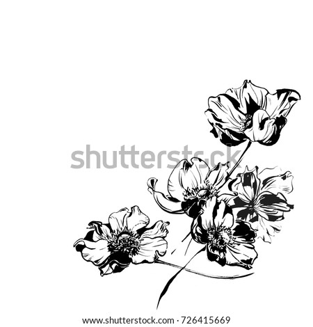 Black anemone flowers and leaves ornament pattern #726415669