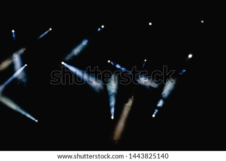 Black background with light bulbs illuminating the darkness with sparkles. #1443825140