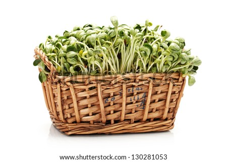 Black bean sprouts on white background