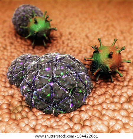 Black Beetle Virus and Adenovirus