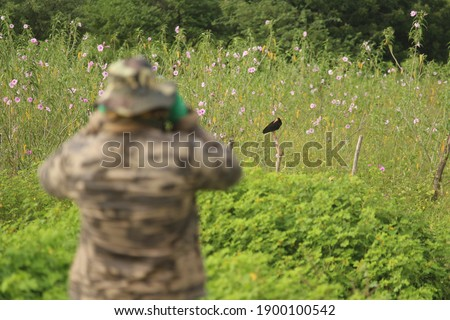 Black bird perched on fence with defocused bird watcher looking through binoculars. Stock photo ©