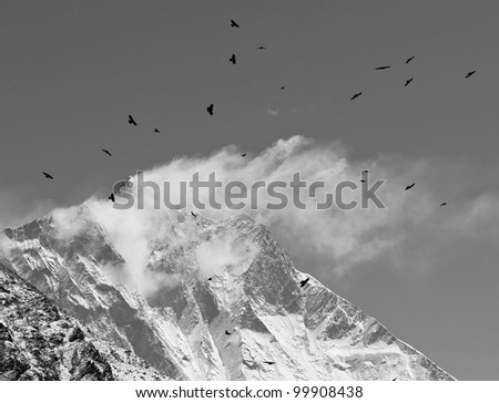 Black birds and snow flags on the top of the Lhotse (8516 m), black and white - Mt. Everest region, Nepal