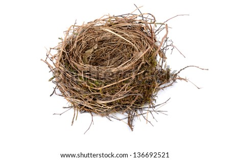 black birds nest on white background