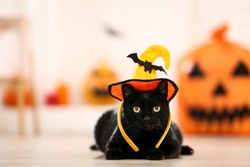 Black cat in halloween hat lying on the floor