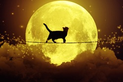 Black cat, kitty walking on rope above the clouds looking upwards at full moon, cloudy dark night sky background. Dreamy magic skyline, artistic screen saver. Elements of this image furnished by NASA